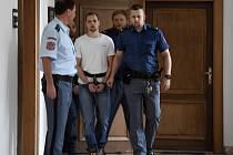 Z podílu na loupeži na benzinové pumpě u Nelahozevsi na Mělnicku, při níž byla v noci na 3. prosince 2018 zastřelena 58letá čerpadlářka, se před Krajským soudem v Praze zpovídali David Šindler a Ivan Hollitzer.