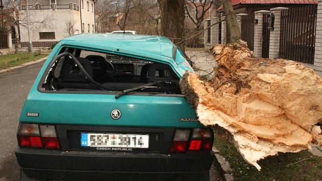 Ulomená větev zdemolovala v Kralupech osobní vozidlo.