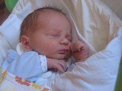 Marek Vihan se rodičům Haně Pavlíkové a Marku Vihanovi z Chloumku narodil v mělnické porodnici 6. srpna 2016, vážil 3,27 kg. Na brášku se těší 8letý Radim a 3,5letá Hanička.