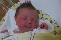 Klára Šatrová se rodičům Lence a Zdeňkovi z Roudnice nad Labem narodila v mělnické porodnici 29. dubna 2013, vážila 3,28 kg a měřila 50 cm.