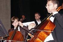 Jan Sedláček, usedl v Komorním orchestru Dvořákova kraje při společném  koncertu s žáky základní umělecké školy  vedle svého italského učitele Emanuele Gadalety, stálého člena orchestru.