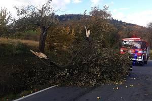 Středočeští hasiči měli během čtvrtečního řádění větrné smršti téměř 12 stovek zásahů.