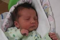 Kryštof Mederos se rodičům Štěpánce Grünerové a Antoniu Mederosovi z Mělníka narodil v mělnické porodnici 8. dubna 2015, vážil 3,14 kg a měřil 50 cm. Na brášku se těší 4letá Karolínka a skoro 9letý Antonio.