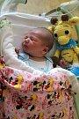ŠTĚPÁN FIDLER se rodičům Michaele Zeithamlové a Františkovi Fidlerovi ze Sedlce u Benátek nad Jizerou, narodil v mělnické nemocnici 25. 4. 2018 , vážil 4,310 kg a měřil 53 cm.