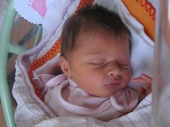 Julie Stefflová se rodičům Ivě Saibtové a Vítu Stefflovi z Mělníka narodila v mělnické porodnici 24. října 2016, vážila 2,99 kg a měřila 51 cm.
