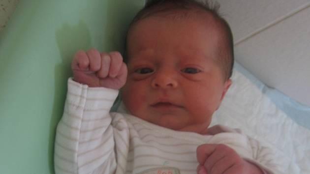 Zuzana Hanykýřová se rodičům Marcele Kuklové a Janu Hanykýřovi z Kostelce nad Labem narodila 16. listopadu 2012, vážila 3,30 kg a měřila 50 cm. Na sestřičku se těší 2,5letý Jakub.
