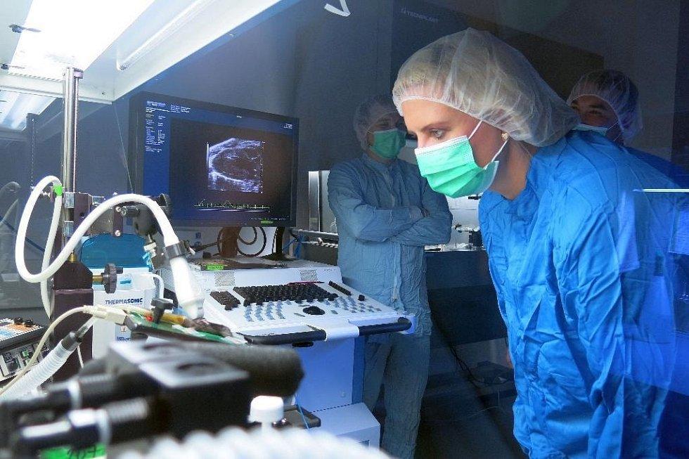 Zástupci Středočeského kraje navštívili výzkumné centrum BIOCEV. Zástupci kraje měli možnost navštívit uzavřené laboratoře.
