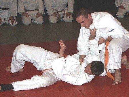 Při ukázce zápasu judo při kralupském Budo show účinkovali také úspěšní zápasníci bratři Hujerové, kteří navazují na zápasnickou proslulost svého otce.