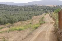 Cesta mezi olivovými háji ve druhé etapě pouti