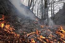 Sucho a vysoké teploty požárům jen napomáhají.