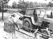 Píše se rok 1980 a mělničtí zemědělci vyrážejí na pravidelné sezónní práce.