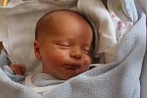 Pavel Šálek se rodičům Janě Karabáčkové a Františku Šálkovi z Mělnického Vtelna narodil 4. října 2017 v mělnické porodnici a vážil 2,74 kilogramu. Doma se na něj těší 2letý Viktor.