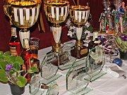 Kulturní dům Vltava patřil v sobotu soutěži družstev ve střelbě z praku. Prakiáda byla věnovaná Fondu ohrožených dětí, zúčastnily se jí i děti z Klokánku v Litoměřicích.