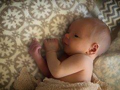 THEODOR Křovina se v neratovické porodnici narodil 21. března 2017, vážil 3,19 kg a měřil 47 cm.