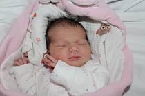 Liliana Chvátalová, Bašť. Narodila se 7. října 2019, po porodu vážila 3 090 g a měřila 50 cm. Rodiči jsou Aleš Chvátal a Tereza Chvátalová.