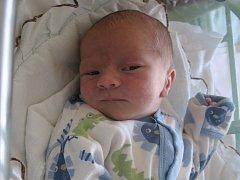 Ondřej Kerpl se rodičům Kristýně Kišové a Jaroslavu Kerplovi z Lužce nad Vltavou narodil v mělnické porodnici 11. července 2014, vážil 2,90 kg a měřil 52 cm.
