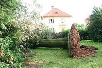Následky vichřice na Mšensku