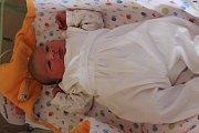 ROZÁLIE Horáčková se rodičům Lucii a Radkovi z Cítova narodila 10. dubna 2017 v mělnické porodnici, vážila 3,64 kg a měřila 50 cm.