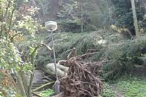 Lesy u Kokořínského Dolu jsou turistům nepřístupné. Kvůli bezpečnosti tam byl vydán zákaz vstupu.