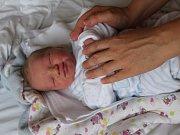 Vojtěch Nicek se rodičům Lucii Šnajdrové a Petru Nickovi z Mělníka narodil 31. srpna 2017 v mělnické porodnici, měřil 51 centimetrů a vážil 3,63 kilogramu. Doma se na něj těší 6letý Viktor a 8letá Petra.
