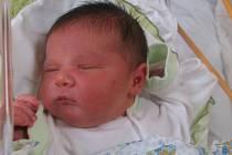 Damian Bujtur Jarčič se rodičům Kristýně a Filipovi z Brandýsa nad Labem narodil v mělnické porodnici 3. března 2017, vážil 4,07 kg a měřil 54 cm. Na brášku se těší skoro 3letá Colette.