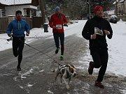 Borecký závod sníh nezastavil, půlmaraton si podmanil Lukáš Kozlík.