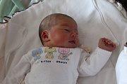 ELIŠKA LIŠKOVÁ se rodičům Renatě a Antonínovi z Mlékojed narodila v mělnické porodnici 31. ledna 2018, vážila 3,17 kg a měřila 49 cm. Doma se na ni těší 3letý Toníček.
