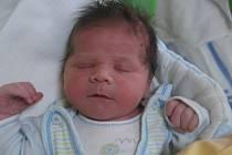 Alexej Babjak se rodičům Slávě Stašové a Jaroslavu Babjakovi z Kralup nad Vltavou narodil 12. dubna 2012, vážil 3,88 kg a měřil 52 cm.