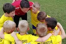 Fotbalisté U8 FK Neratovice-Byškovice obsadili v premiérovém ročníku miniligy osmé místo.