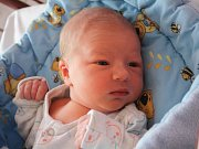 Sofie Kuželová se rodičům Žanetě a Michalovi z Prahy narodila v neratovické porodnici 8. února 2017, vážila 3,08 kg a měřila 48 cm. Na sestřičku se těší tři bratři.