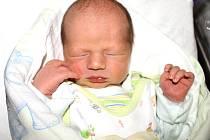 Vojtěch Dvořák se rodičům Zuzaně Heimrathové a Janu Dvořákovi z Nelahozevsi narodil ve slánské  porodnici 20. srpna 2013, vážil 3,40 kg a měřil 50 cm. Na brášku se těší Filípek.