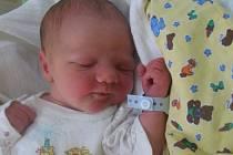 Albert Mihola se rodičům Janě Jelínkové a Ondřeji Miholovi z Prahy 8 narodil 21. října 2012, vážil 3,78 kg.