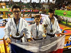 Mistři Evropy 2016 v kategorii kata team kadeti se stali David Le, Jan Řápek a Jan Le.