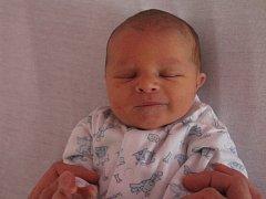 David Hildebrand se rodičům Pavle a Jaroslavovi z Nehvizd narodil v neratovické porodnici 16. dubna 2016, vážil 3,63 kg a měřil 50 cm. Na brášku se těší 2,5letý Honzík.