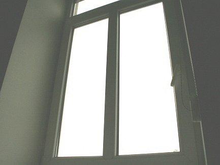 Plastová okna  umožňují velký výběr doplňků, jako jsou například síťky proti hmyzu.