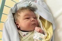Hubert Prášil se rodičům Tereze a Ondřejovi z Odoleny Vody narodil v neratovické porodnici 23. září 2015, vážil 4,22 kg a měřil 52 cm. Na brášku se těší skoro 7letá Josefína.