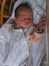 Václav Petrželka se rodičům Veronice a Vojtovi z Mělníka narodil v mělnické porodnici 12. července 2016, vážil 3,54 kg a měřil 50 cm. Na brášku se těší skoro 2letý Bohoušek.