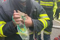 Požár rodinného domu v Neratovicích. Kočku nalezenou v hořícím objektu nechali hasiči dýchat kyslík.