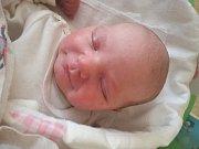 Eliška Tylová se rodičům Miloslavě Polívkové a Romanovi Tylemu z Vysoké narodila v mělnické porodnici 9.12.2017, vážila 3,45kg a měřila 51cm. Doma se na sestřičku těší 1,5 roční Kubíček.
