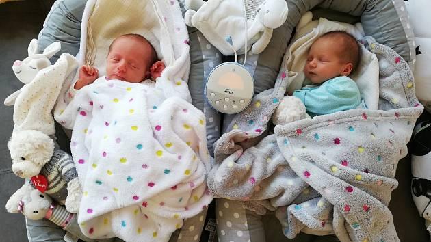 Aneta a Ondřej Petrovičovi, Mělník. Narodili se 30. 3. 2019, Aneta po porodu vážila 2420 g a měřila 42 cm, Ondřej vážil 2330 g a měřil 42 cm. Rodiče jsou Zuzana Červenková a Jan Petrovič.