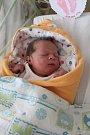 SABINA ORÁČKOVÁ se rodičům Žanetě Oráčkové a Tomáši Oláhovi z Mělníka narodila v mělnické porodnici 12. října 2017, měřila 51 centimetrů a vážila 3,72 kilogramu. Doma se na ni těší 3letá Nikolka.