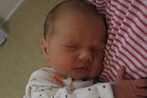 Amálie Nejedlá se rodičům Jiřině Kovářové a Jiřímu Nejedlému z Kralup nad Vltavou narodila v mělnické porodnici 19. ledna 2016, vážila 2,70 kg a měřila 46 cm. Na sestřičku se těší skoro 3letá Adélka.