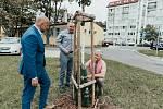 Instalací zavlažovacích vaků ke stromům v ulicích Kralup nad Vltavou, Mělníka a Neratovic se nachýlila ke konci první etapa testovací fáze společného projektu Středočeských vodáren (SVAS), Vodáren Kladno – Mělník a regionálních měst a obcí.