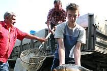 Mělničtí rybáři vysazovali do mlazických tůní ryby.