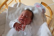 Adélka Šrámková, Mělník. Narodila se 9. 4. 2019, po porodu vážila 3670 g a měřila 51 cm. Rodiče jsou Andrea Šrámková a Michal Petržílek.