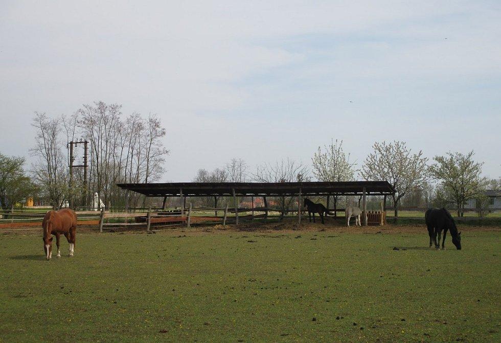 Zoopark Zelčín.