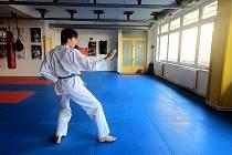 Vojtěch Beneš, Taekwondo Hansoo Mělník