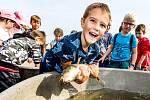 Rybáři pod dohledem dětí vysadili do Labe u Spolany půl tuny ryb.