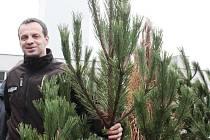 Jan Hartman prodává stromečky z vlastního lesa už dlouhá léta.