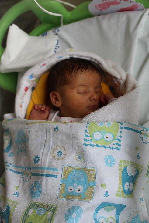 Darja Alexandra Danišková se rodičům Michaele Daniškové a Mariusovi Alinovi Robe ze Štětí narodila 3. října v mělnické porodnici, měřila 49 centimetrů a vážila 2,87 kilogramu.